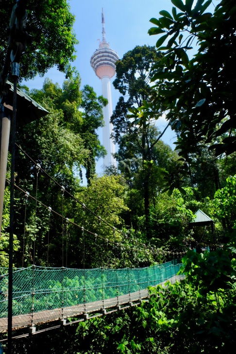 KL Forest Eco-Park_Canopy Walk_1