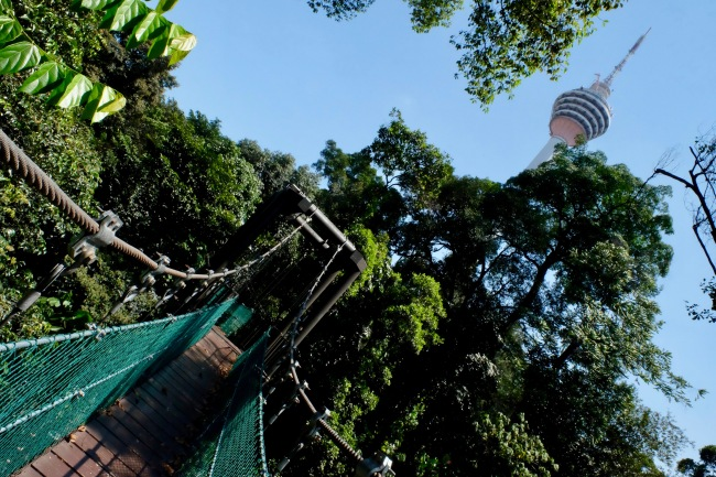 KL Forest Eco-Park_Canopy Walk_3
