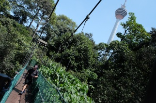 KL Forest Eco-Park_Canopy Walk_5