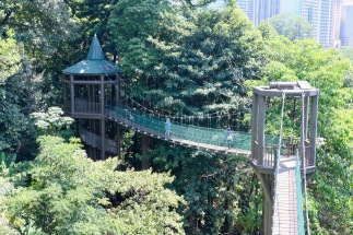 KL Forest Eco-Park_Canopy Walk_7