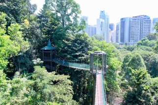 KL Forest Eco-Park_Canopy Walk_8