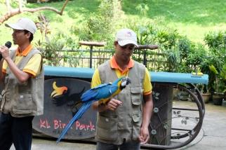 KL_Bird Park_6