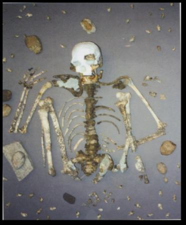 Skeletal remains - Perak Man
