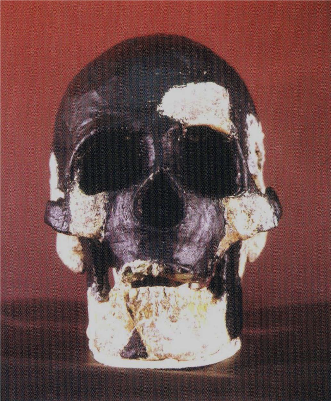 Close-up of skull - Perak Man