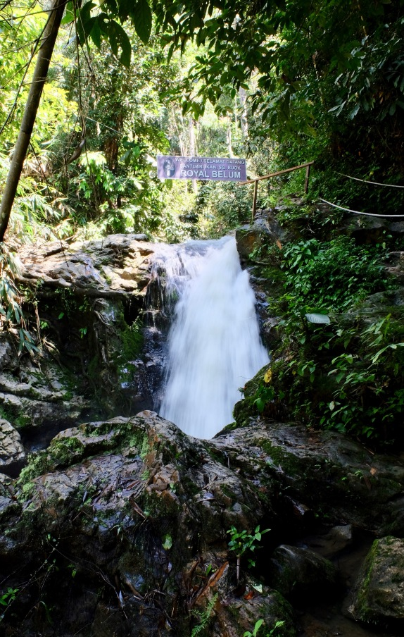 Waterfall in Royal Belum State Park