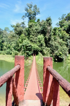 Suspension bridge in Royal Belum State Park