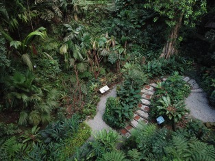 Tropical Spice Garden aerial view