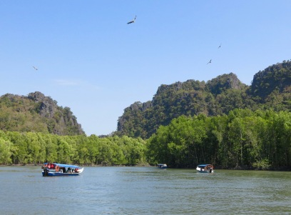 Eagles flying over Langkawi Geopark