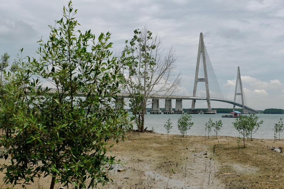 Senai Desaru Bridge