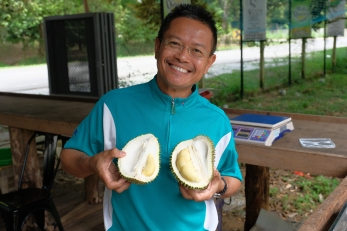 Tasting Durian in Malacca region