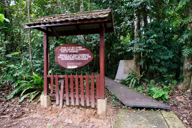 Entrance to rainforest walk