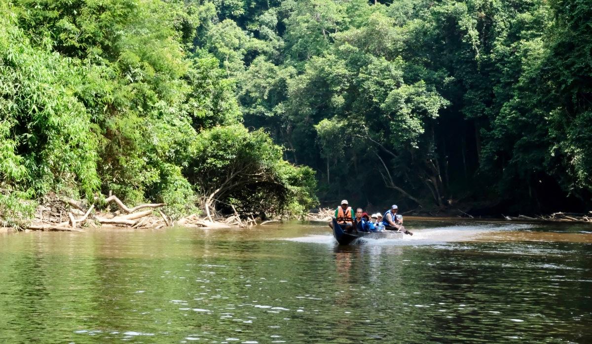 River boat taman negara