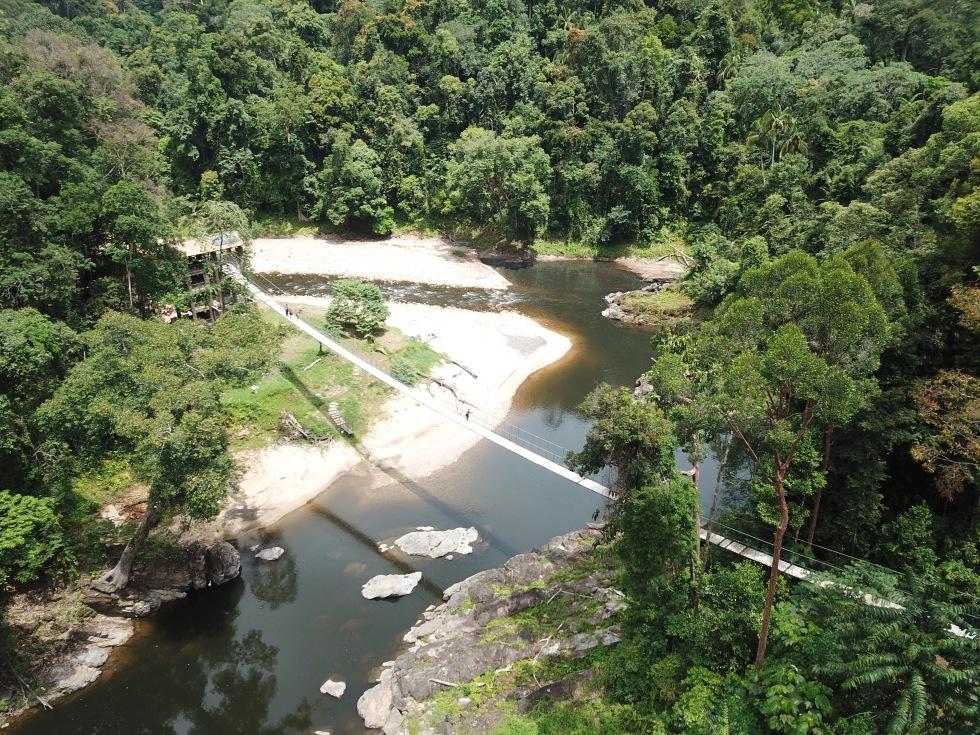 Suspension bridge in national park