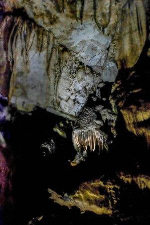 Limestone formation - Mulu caves - Sarawak