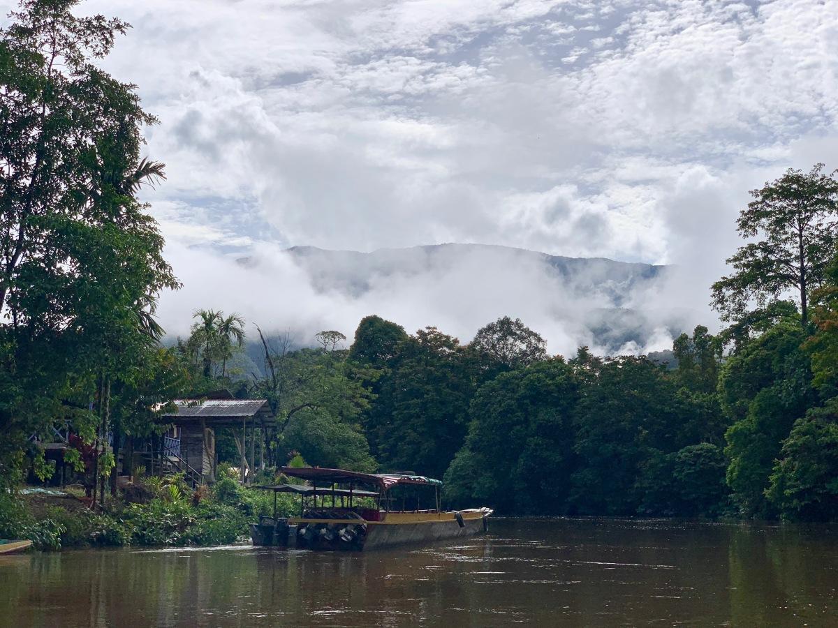 River at Mulu 7