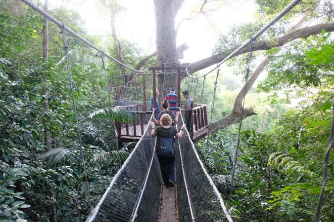 Canopy walk in forest at Rasa Ria resort, Sabah