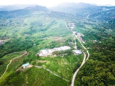 Sabah Tea aerial view