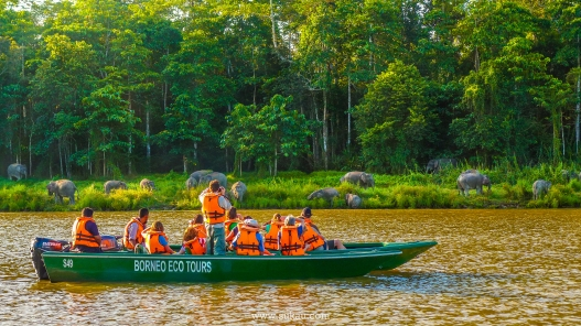 Borneo Eco Tours 9