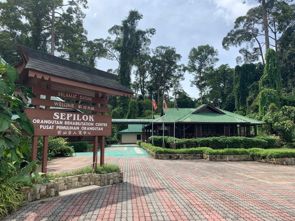 Sepilok Orangutan rescue centre.JPG
