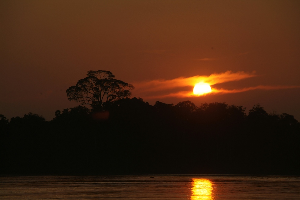 Sunset over Kinabatangan River